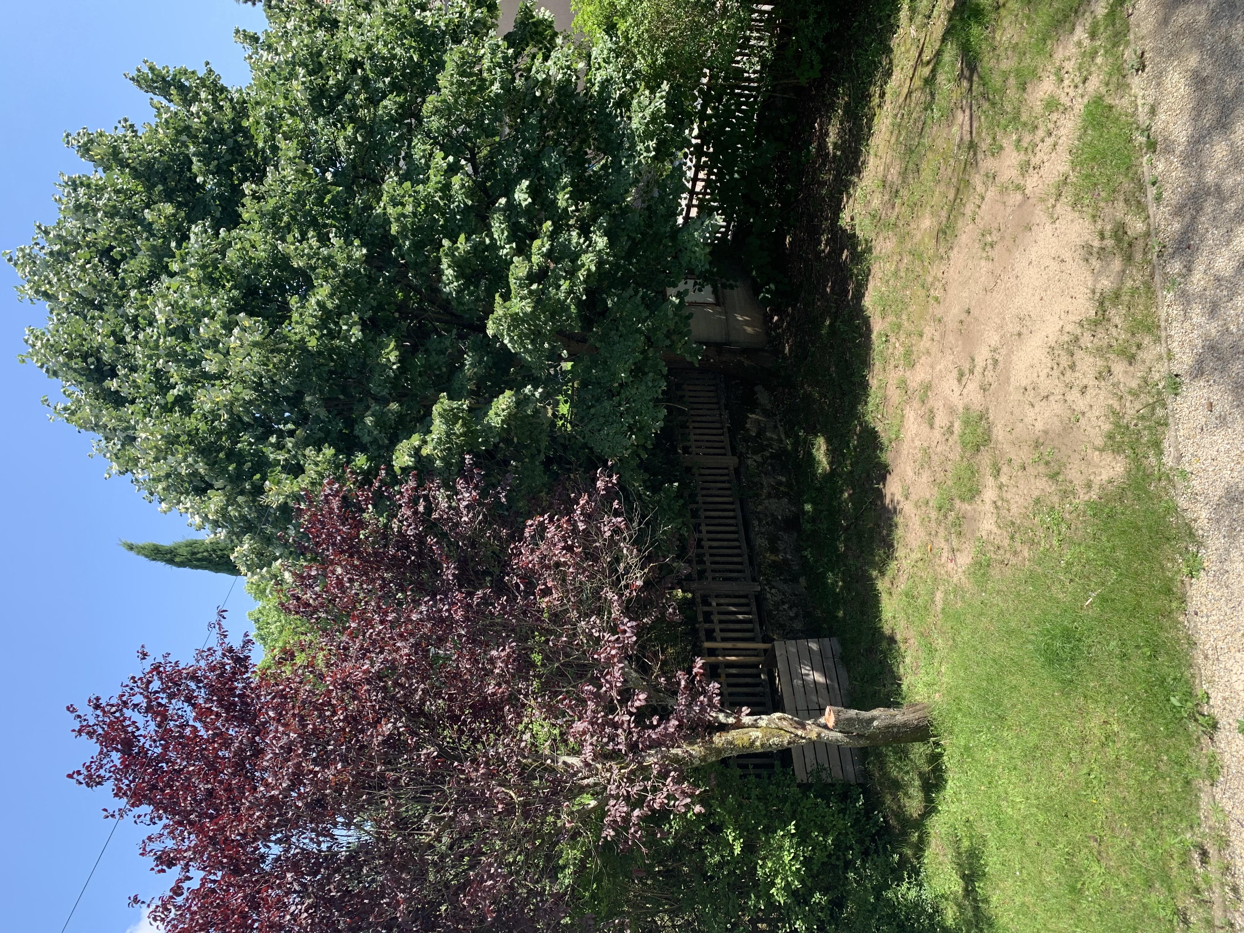Proche Tassin Bourg - Maison avec jardin